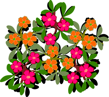Clip Art, Flor, Flora, Flower, Nature, Plant