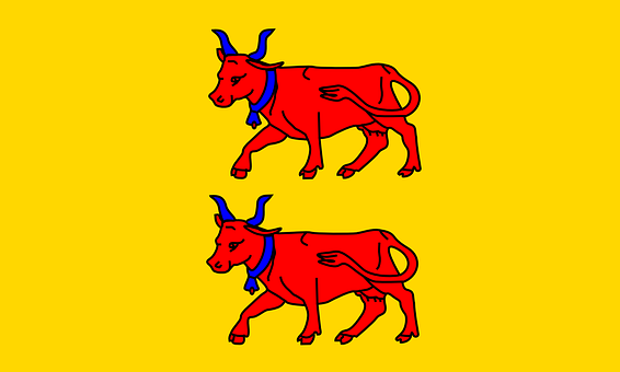 Viscounts Of Bearn, Flag, Coat Of Arms, Historical