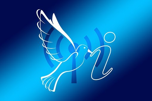 Wlan, Radio Network, Local, Wireless, Dove, Info
