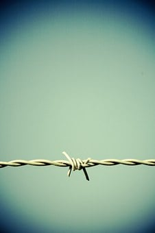 Barbed Wire, Fence, Border, Metal, Wire, Thorn