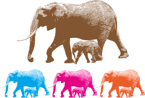 Animal, Ai, Illustrator, Cartoon, Elephant