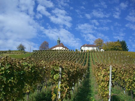 Gengenbach, James Bus Chapel, Berglekapelle, Vineyard