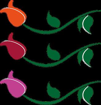 Orange, Red, Wine Red, Pink, Flower, Blossom, Bloom