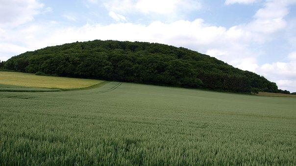 Bausenberg, Landscape, Mountain, Field, Sky, Sachsen