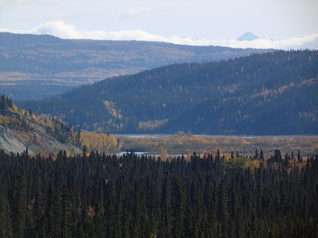 Copper River Valley, Copper Basin, Alaska