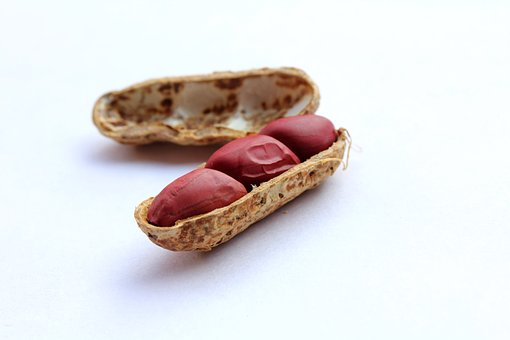 Peanuts, Cover, Nut, Healthy, Food, Tasty, Snack