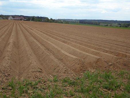 Ridge, Arable, Ackerfurchen, Earth, Cultivation