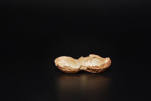 Peanut, Cut In Half, Empty, Halved Peanut Shell