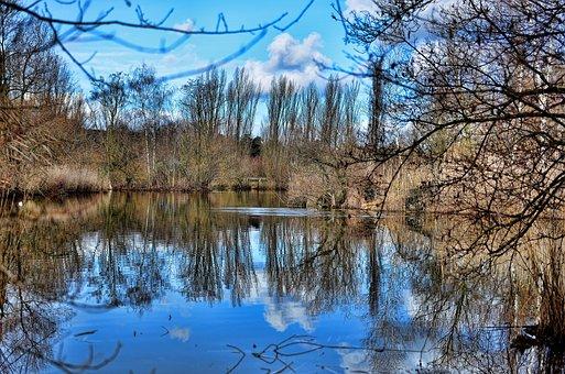 Basel, Green 80 Park, Reflections, Water, Lake, Blue