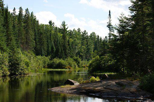 Algonquin Provincial Park, Madawaska River, Ontario