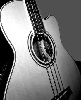 Low, Acoustic Bass, Music, Strings, Soundboard, Wood