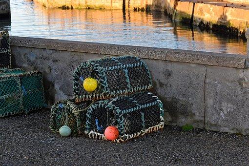 Fishing, Creel, Equipment, Net, Water, Basket, Sea
