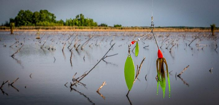 Spinner Bait, Fishing Lure, Fishing, Delta, Joca Lake