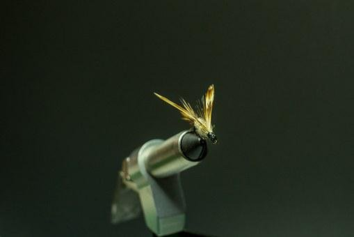 Flies, Fly-tie, Fly-tying, Lure, Fishing, Fly, Craft