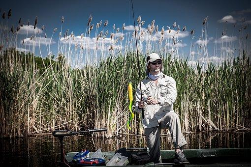 Fisherman, Casting, Fisher Men, Fishing Lure, Rod