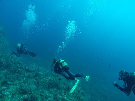 Diver, Diving, Sea, Scuba Diving, Meeting, Bottles