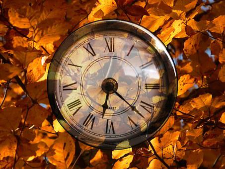 Life Time, Pocket Watch, Time, Beech, Golden Autumn