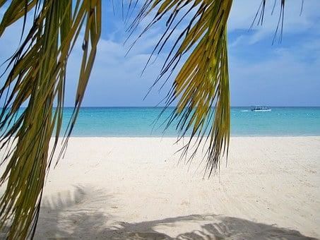 Jamaica, Palm Trees, Beach, Typical Jamaican, Paradise