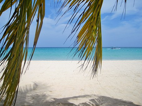 Jamaica, Palm Trees, Beach, Typical Jamaican, Paradise