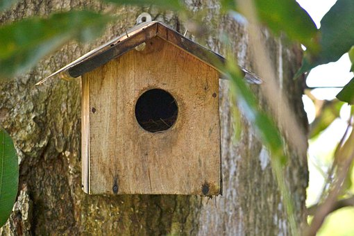 Bird Nest, Breeding Box, Bird Shelter