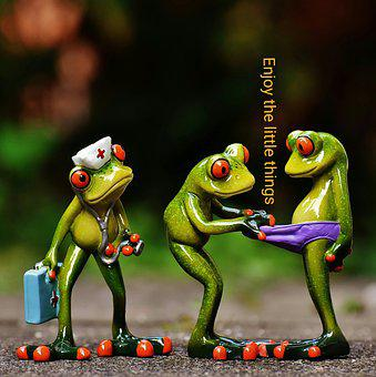 Frogs, Enjoy The Little Things, Funny, Cute, Nurse
