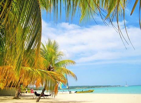 Gorgeous, Jamaica, Palm Trees, Beach, Typical Jamaican