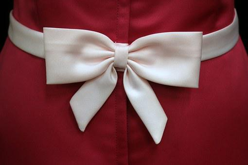 Bow, Satin, Pink, Zipper, Dress, Fashion, Knot