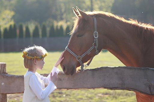 Little Girl, Horse, Riding School, Horse Head