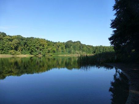Grunewald, Lake, Nature