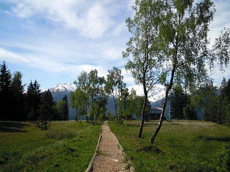 Moor, Moorweg, Away, Landscape, Thurn Pass