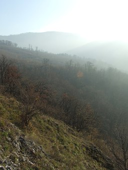 Fog, Mysterious, Beech Mountain, Dédes Castle, Forest