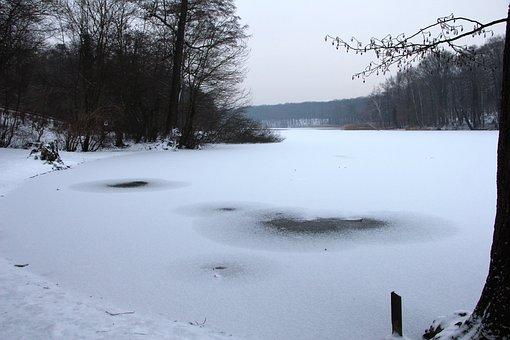 Nature, Winter, Grunewald, Lake, Schlachtensee, Snow