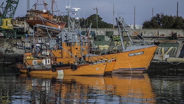 Fishing, Mar Del Plata, Sea, Boat, Water, Calm, Port