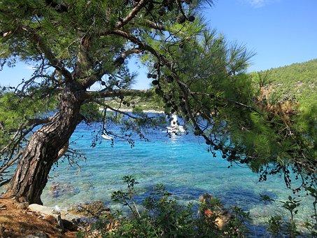 Bodrum Village, Turkey, Clear Blue Water, Boat, Sunny