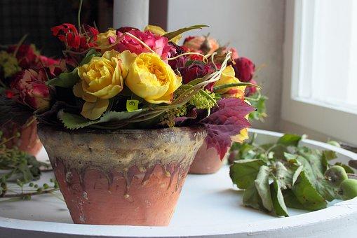 Still Life, Flowerpot, Decoration, Roses, Flowers
