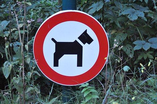 Signboard, Public Sign, Sign, Dog, Dog Prohibition Sign
