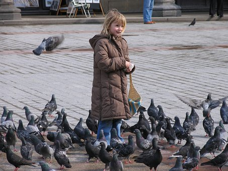 Pigeons, Space, Girl, Child, Feed, Birds, Eat, Peck