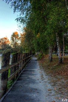 Walkway, Fort, Autumn, Flora, Fall, Foliage, Nature