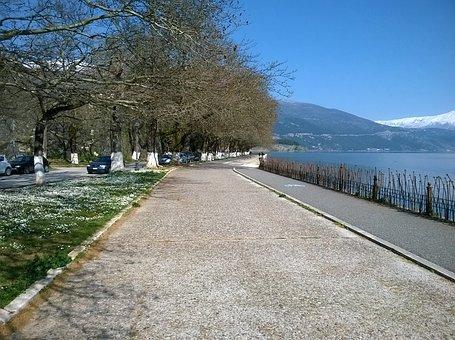 Walk, Lake, Lake Side, Walk Way, Track, Spring