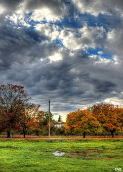 Nicomekl, Park, Langley, Blue, Cloudy, Skies, Nature