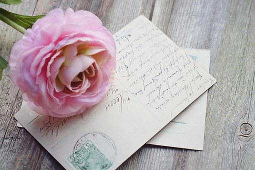 Postcard, Map, Font, Old, Vintage, Flower, Rose, Pink