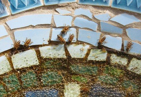Bees, Drink, Water, Pond, Mosaic, Bird, Bath, Blue