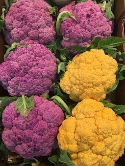Cavoli Viola, Cauliflower, Flower, Produce, Garden