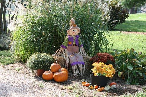 Pumpkin, Fall, Autumn, Straw, Orange, Halloween