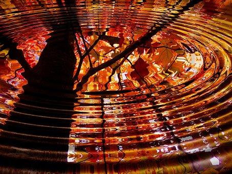 Tree, Mirroring, Mirror, Wave, Water, Leaf, Leaves