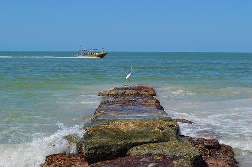 Bird, Ocean, Boat, Landscape, Holbox, Nature, Vacation