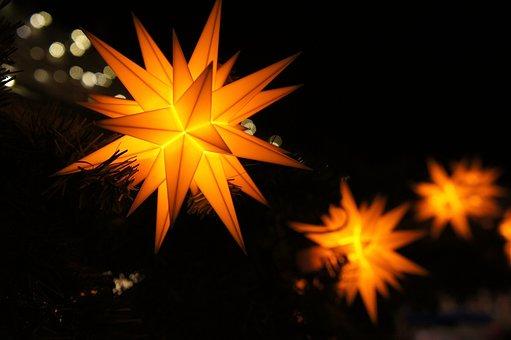 Poinsettia, Advent, Christmas, Star, Christmas Decor