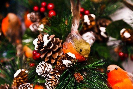 Animal, Bird, Celebration, Christmas, December