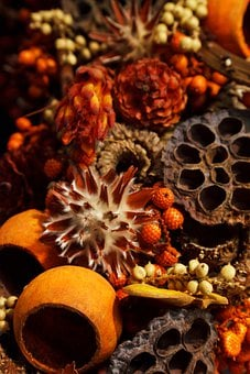 Aroma, Aromatherapy, Autumn, Background, Christmas
