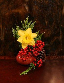 Flower, Daffodil, Arrangement, Vase, Christmas, Berries